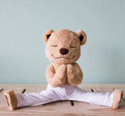 Meddy Teddy (The Meditation Teddy Bear)