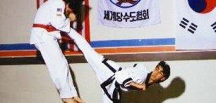 Martial Arts School in Springfield, PA