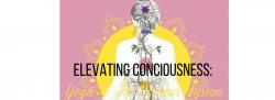 Elevating Conciousness: Yoga & The Nervous System