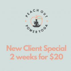 New Client Special - 2 weeks for $20