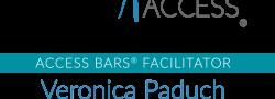 The Access Bars® Class