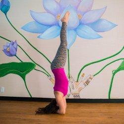 Rainbow Body Yoga 200hr Yoga Teacher Training Full Payment