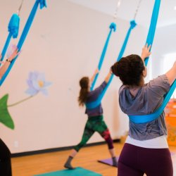 Yoga + Aerial Month Unlimited Class Card