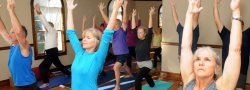 Online Course: Beginners Yoga Series