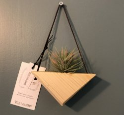 $24 Small Air Plant Hanger
