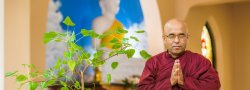 HealingThroughLovingKindness Practice with Bhante Sujatha