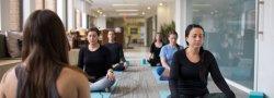 Conner Ash Office Meditation