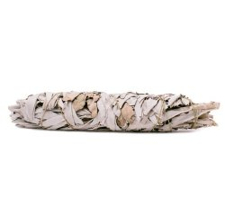 "White Sage | 9"" Large Smudge Stick"