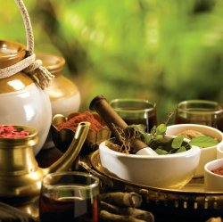 Ayurveda - Optimal Well-being through the Ancient Science of Life