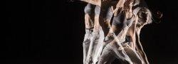 Biotensegrity and Yoga