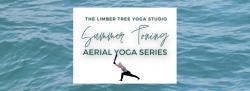 Summer Toning Aerial Yoga Series