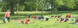 Outdoor Yoga at Central Park