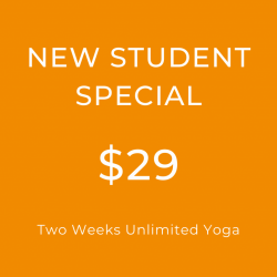 New Student Special - $29