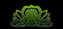Evergreen Holistic