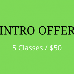 Intro Offer 5 class for $50