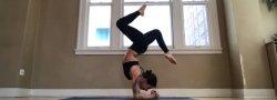 Intermediate/ Advanced Yoga Retreat @ The Himalayan Institute