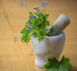 Spring Cleanse Herbal Support