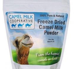 Camel Milk Powder (Large) 7.04oz