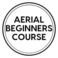 Aerial Beginners Course
