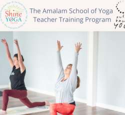 The Amalam School of Yoga 200 hour Yoga Teacher Training Immersion with Anne Howard
