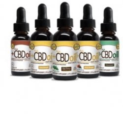 PlusCBD Oil Drops - 2oz. CBD 5mg (Gold Formula)