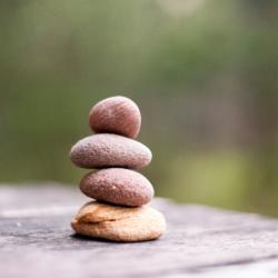 Mindful Meditation-Drop In