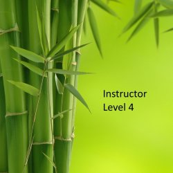 Level 4 Instructor Course