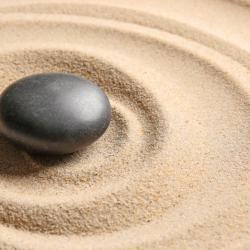 Mindfulness Semi-Private: 4 Sessions (60-min)