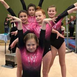 Team Gymnastics Non-member