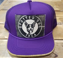 Recaps Hat Purple