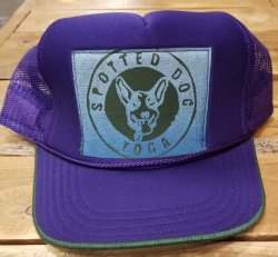 Recaps Hat Purple