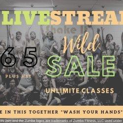 30 Day Live Stream Class Pass