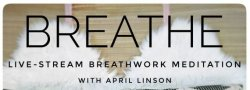Breathe - Live Stream Breathwork Meditation