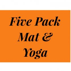 5 Pack of Classes Barre, Mat & Yoga