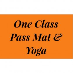 1 Class Pass Barre, Mat & Yoga