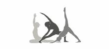 Sussex Yoga Training Ltd