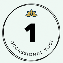 Single Pass | Occasional Yogi