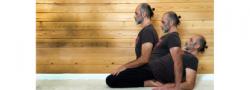 Yin Yoga with Art (In Studio & Live Stream)