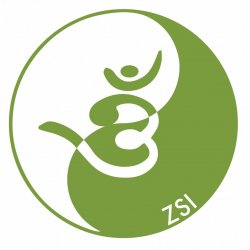 6 Forty-Five Minute Private Qigong Sessions
