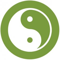 Feng Shui Single Follow-Up Consultation