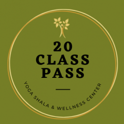 NEW! 20 Class Pass