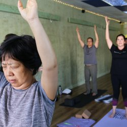 Beginners Yoga on line Course