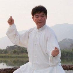 Chen/Cannon Fist Advance