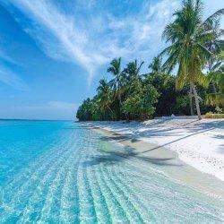 Beach Flow Yoga