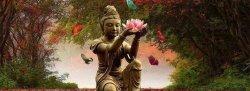Soul Purpose 200 Hour Yoga teacher Training