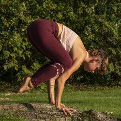 Yoga Tarif Standard Rate