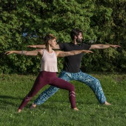 Yoga Tarif Supporter Rate