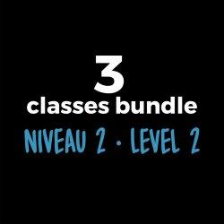 3-Course Bundle Level 2