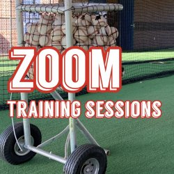 Zoom -One- Training Session