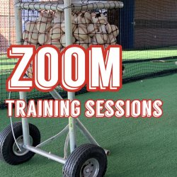 6 ZOOM Training Sessions ($55 each)